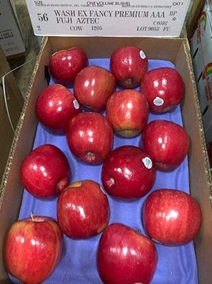 美國富士蘋果